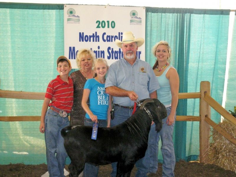 REDCREEK'S NIGHTSHIFT wins his division at the NC Mountain State Fair.